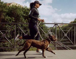 razones para salir a correr con tu perro