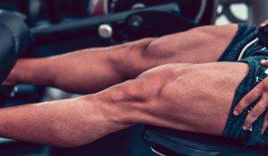 Músculos agonistas, antagonistas, sinergistas y estabilizadores