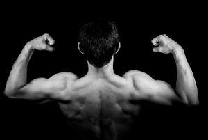 Definiciones de músculos agonistas, antagonistas, sinergistas y estabilizadores